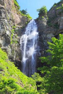 白山白川郷ホワイトロード・ふくべの大滝の写真素材 [FYI01798605]