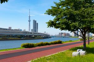 汐入公園の写真素材 [FYI01798618]