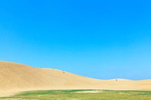 鳥取砂丘と青空の写真素材 [FYI01798636]