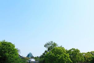 緑の木立に名古屋城天守閣と加藤清正の像の写真素材 [FYI01798676]