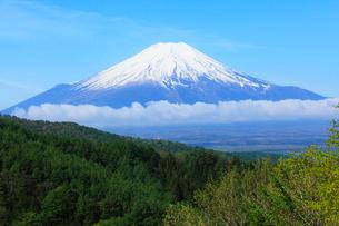 二十曲峠より残雪の富士山の写真素材 [FYI01798703]