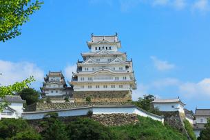 姫路城天守閣の写真素材 [FYI01798801]