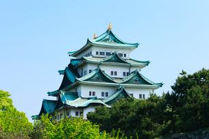 名古屋城天守閣と青空の写真素材 [FYI01798836]