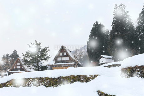 冬の五箇山 相倉合掌造り集落に降雪の写真素材 [FYI01798840]