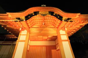 名古屋城・本丸御殿のライトアップ夜景の写真素材 [FYI01798858]