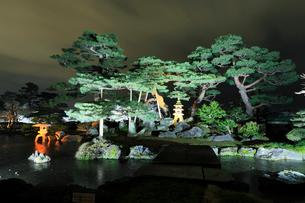 金沢兼六園・七福神山ライトアップの写真素材 [FYI01798864]