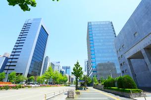 名古屋桜通・高層ビルと新緑のイチョウ並木の写真素材 [FYI01798879]