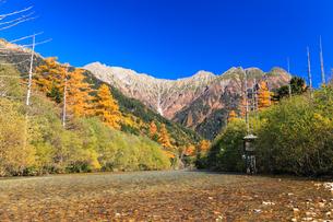 秋の上高地 梓川を渡るサルと紅葉に穂高連峰の写真素材 [FYI01798880]