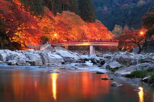 香嵐渓 巴川に待月橋と紅葉ライトアップ夜景の写真素材 [FYI01798881]