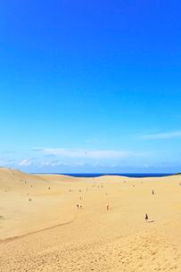 鳥取砂丘と日本海の写真素材 [FYI01799048]