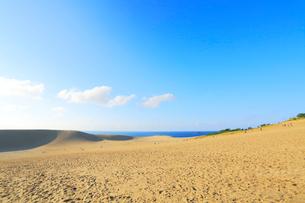 鳥取砂丘と日本海の写真素材 [FYI01799057]
