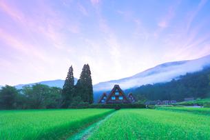 夏の白川郷・朝焼けの写真素材 [FYI01799100]