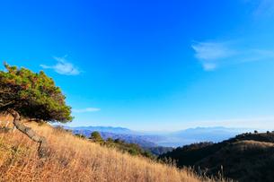 高ボッチ高原より諏訪湖と遠望富士山の写真素材 [FYI01799107]