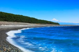 三保の松原より冠雪の富士山の写真素材 [FYI01799144]