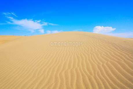 鳥取砂丘と空に雲の写真素材 [FYI01799149]