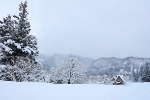 冬の白川郷の写真素材 [FYI01799228]
