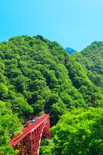 黒部峡谷鉄道・トロッコ電車と快晴の空の写真素材 [FYI01799233]