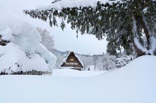 冬の白川郷の写真素材 [FYI01799237]