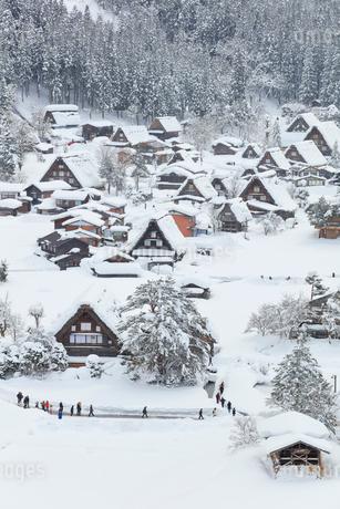 冬の白川郷・城山展望台より望む合掌造り集落の写真素材 [FYI01799251]