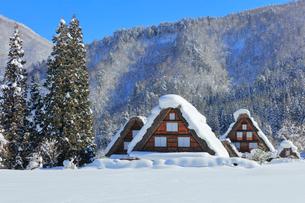冬の白川郷・茅葺屋根に雪の写真素材 [FYI01799266]