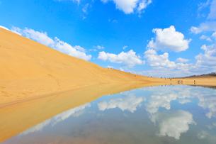 鳥取砂丘・池に映る空と雲の写真素材 [FYI01799267]