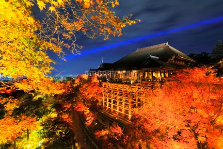 秋の清水寺・紅葉のライトアップ夜景の写真素材 [FYI01799297]