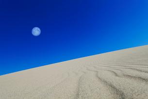 砂丘と西の空に月の写真素材 [FYI01799299]