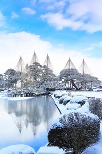 雪化粧の金沢兼六園・霞ヶ池に唐崎松雪吊りの写真素材 [FYI01799317]