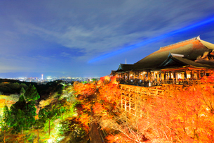 秋の清水寺・紅葉のライトアップに京都の街明かりの写真素材 [FYI01799389]