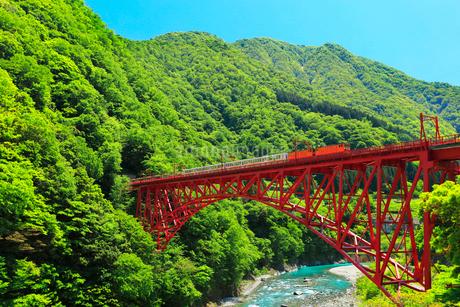 黒部峡谷鉄道・トロッコ電車と快晴の空の写真素材 [FYI01799395]