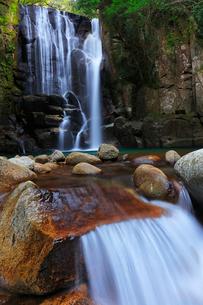 桑の木の滝の写真素材 [FYI01799402]