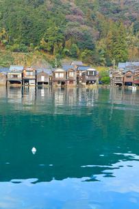 伊根の舟屋とウミネコの写真素材 [FYI01799411]