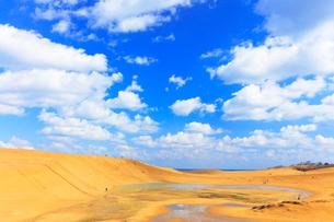 鳥取砂丘・池と空に雲の写真素材 [FYI01799471]