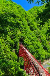 黒部峡谷鉄道・トロッコ電車と快晴の空の写真素材 [FYI01799474]