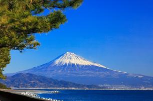 三保の松原より快晴の富士山の写真素材 [FYI01799476]