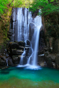 桑の木の滝の写真素材 [FYI01799553]