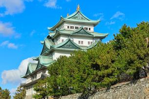 名古屋城天守閣の写真素材 [FYI01799569]