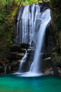 桑の木の滝の写真素材 [FYI01799598]