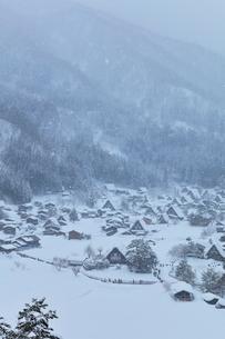 冬の白川郷 城山展望台より望む合掌造り集落に降雪の写真素材 [FYI01799615]