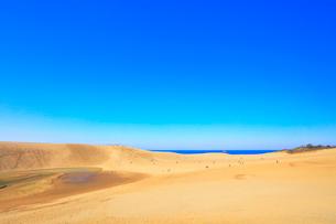 快晴の鳥取砂丘と日本海の写真素材 [FYI01799616]
