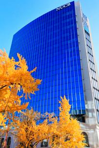 名古屋商科大学名古屋キャンパス丸の内タワーの写真素材 [FYI01799669]