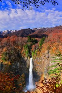 白水滝と虹に紅葉と冠雪の白山連峰の写真素材 [FYI01799670]