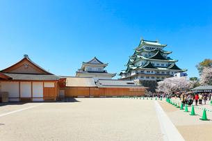 春の名古屋城の写真素材 [FYI01799687]