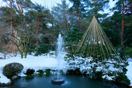 冬の北陸金沢 兼六園日本最古の噴水にカモと雪吊りの写真素材 [FYI01799699]