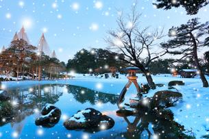 冬の北陸金沢 兼六園の唐崎松雪吊り降雪ライトアップ 冬の段の写真素材 [FYI01799708]