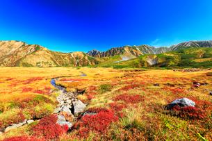 秋の立山 剣岳などの山々を望むの写真素材 [FYI01799719]