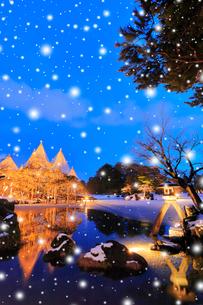 冬の北陸金沢 兼六園の唐崎松雪吊り降雪ライトアップ 冬の段の写真素材 [FYI01799729]