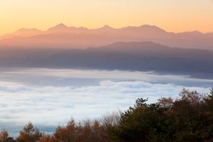 高ボッチ高原より朝焼けの南アルプスの山々と雲海の写真素材 [FYI01799739]