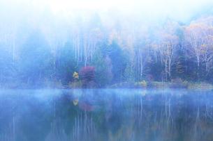 木戸池と紅葉に霧の写真素材 [FYI01799779]