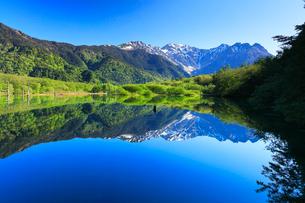 上高地・大正池より快晴の穂高連峰に残雪の写真素材 [FYI01799786]